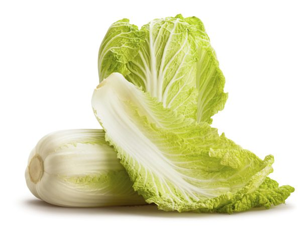 chinese cabbage isolated